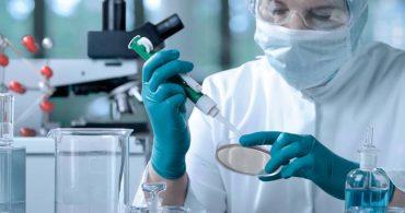 4 - Conselheiros de células-tronco
