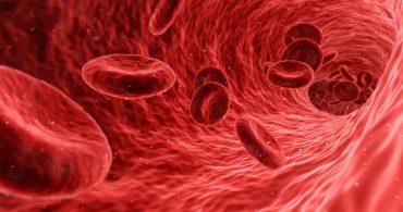 curso de hematologia oncológica