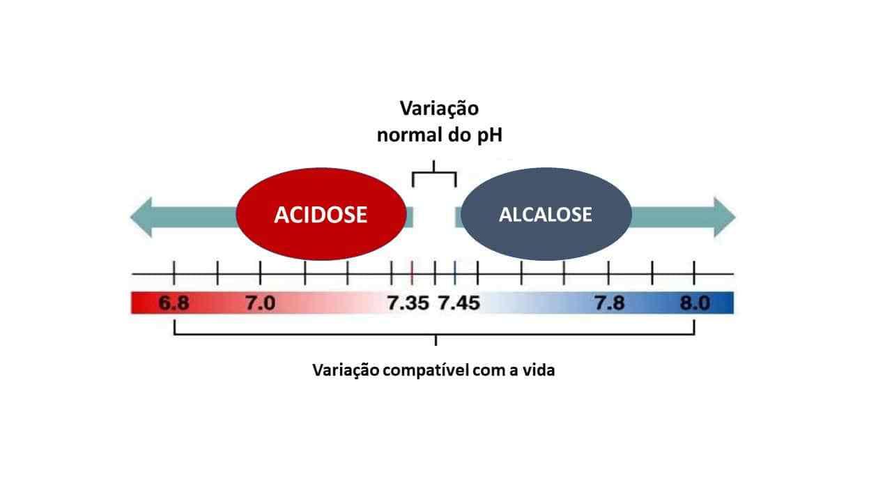 acidose alcalose respiratória metabólica mista