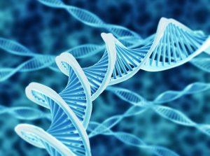 biotecnologia biologia molecular