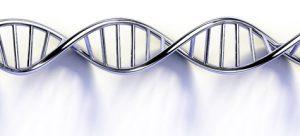 dna farmacogenética