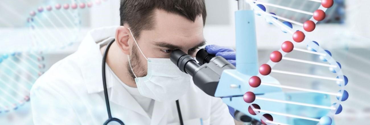 estágio em biomedicina