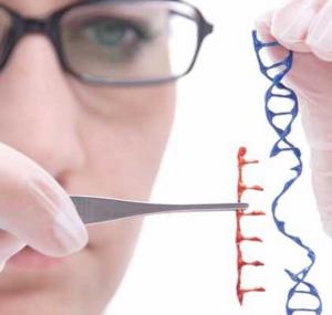 o que é biotecnologia significado engenharia de bioprocessos e biotecnologia