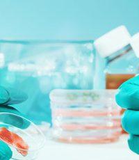 boas práticas em laboratórios de análises clínicas ibap