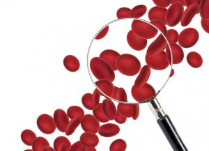 entendendo o hemograma interpretar curso