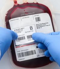 Hemoterapia o que é benefícios riscos componentes do sangue fracionamento