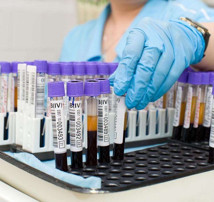 Interpretação de exames laboratoriais veterinários