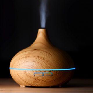 curso de aromaterapia óleos essenciais camila ibap