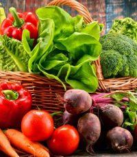 educação alimentar dieta saudável nutrição