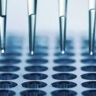 imunoensaio Reações de Imunoprecipitação antigeno anticorpo