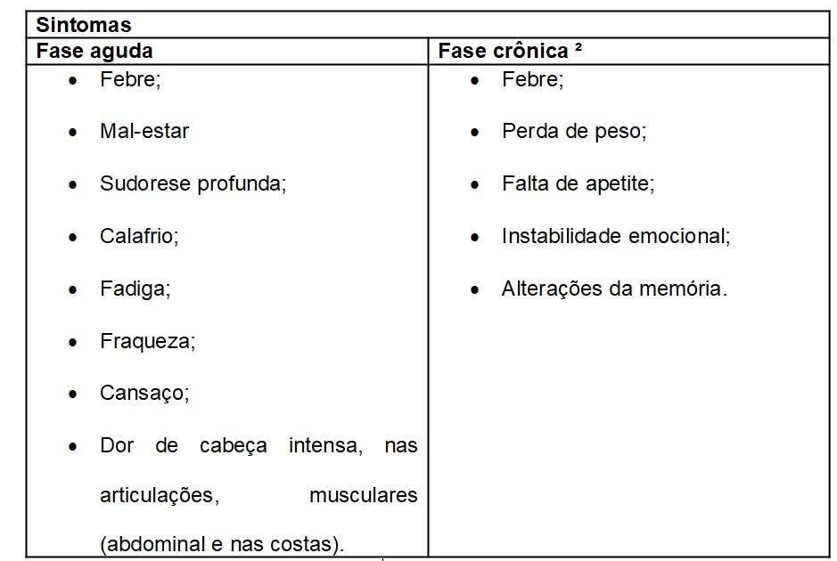 sintoma brucellose humana brucella spp