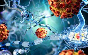 doença-auto-imune-sistema-imunologico-imunologia