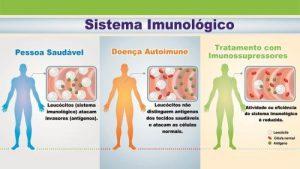 doenças-autoimunes-DAI-sistema-imune-tratamento-com-imunossupressores-leucocitos-anticorpos