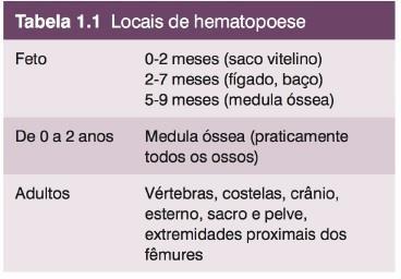 tipos de células do sangue hematopoese
