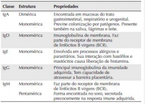 tipos de imunoglobulinas anticorpos funcao do anticorpo IgA IgD IgE IgG IgM