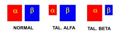 talassemia alfa talassemia beta anemia