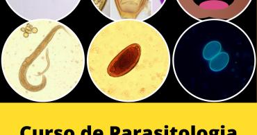 Curso de Parasitologia Humana Básica e Clínica - Hotmart